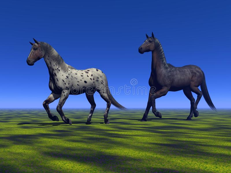 Download Two horses stock illustration. Image of gallop, black - 28971455