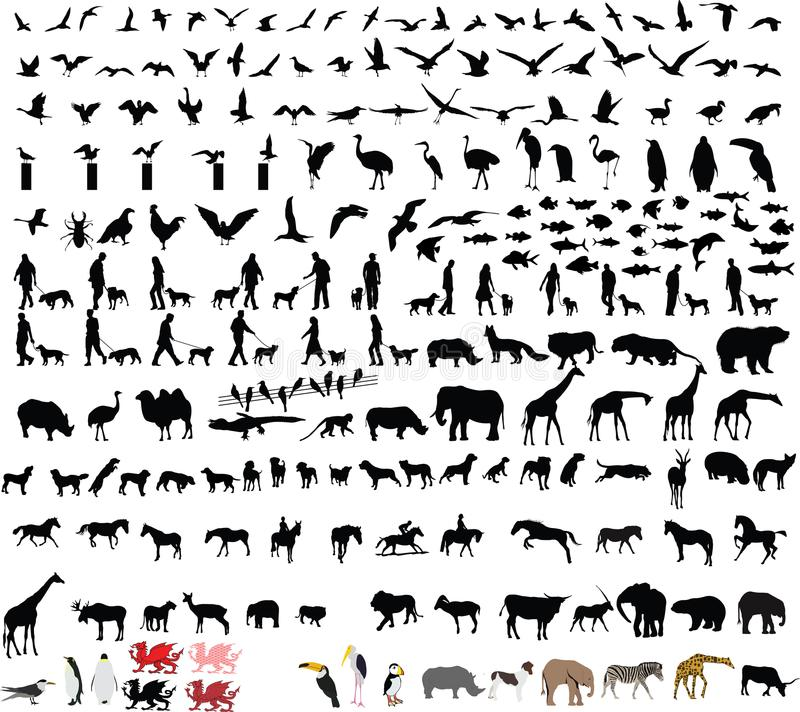 Free Two Hundred Animal Vector Illustrations Stock Photos - 109919413