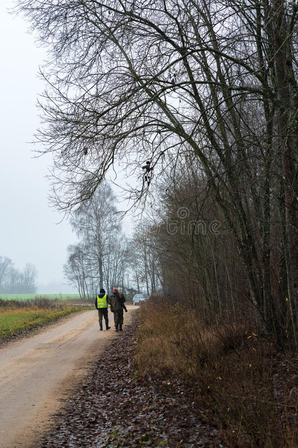 Two hunters who go away. Cloudy, foggy autumn day during hunting; rural road at the edge of the forest with two hunters who go away stock image