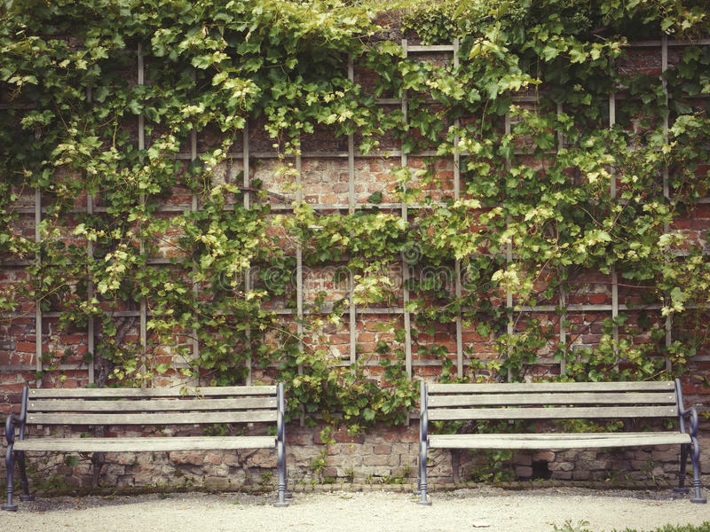 Two identical benches against the background of a stone wall stock image