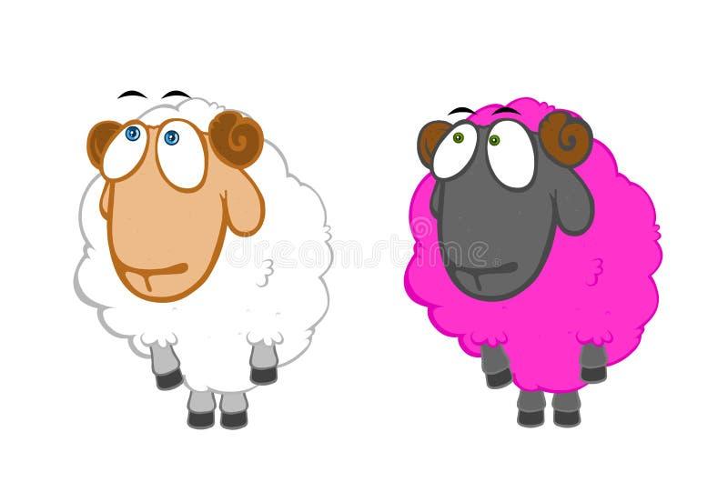 Two innocent sheep vector illustration