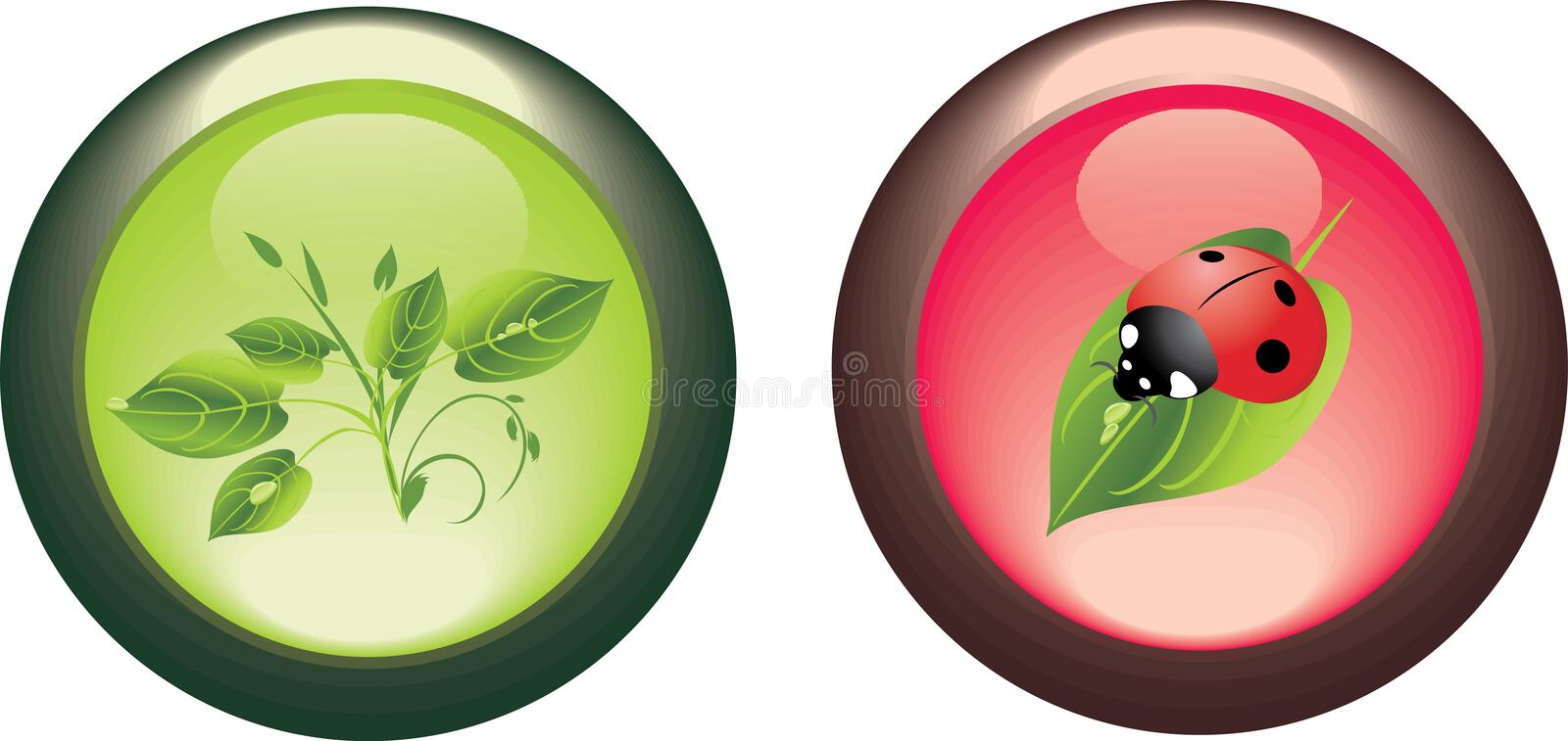 Download Two Isolated Buttons. Spring Concept Stock Vector - Image: 12125571