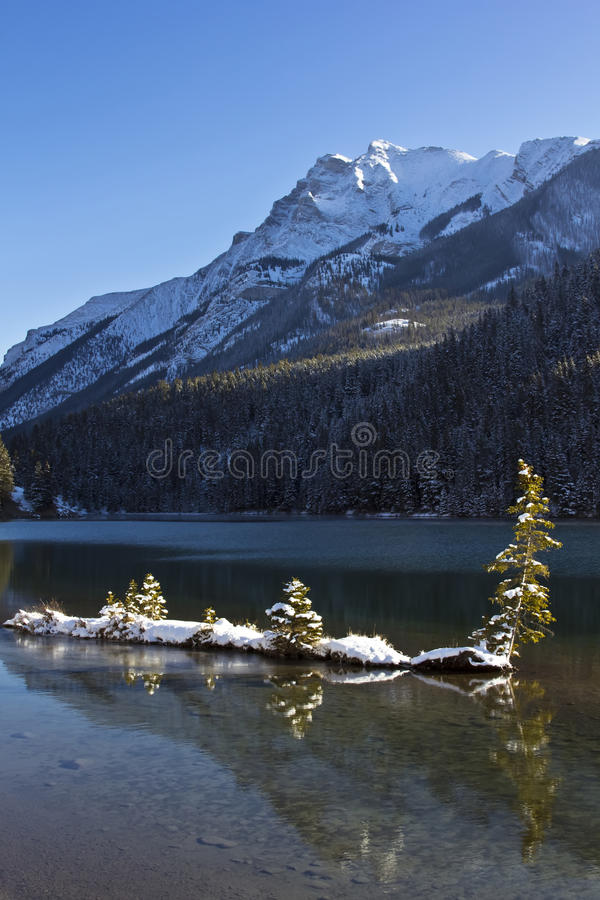 Download Two Jack Lake at Banff stock image. Image of alpine, forest - 22378683