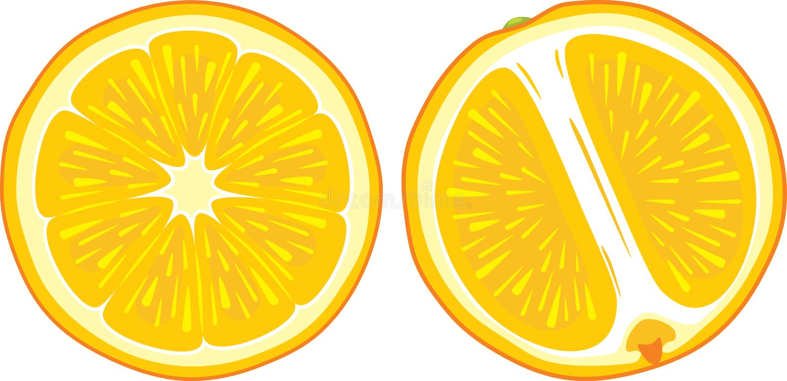 Two juicy orange slices stock images