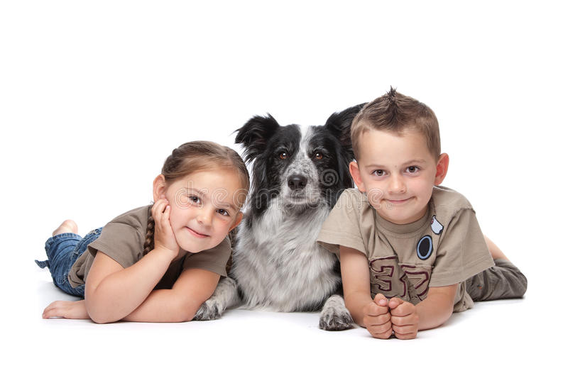 Two kids and a dog. Two kids and a border collie sheepdog in front of a white background