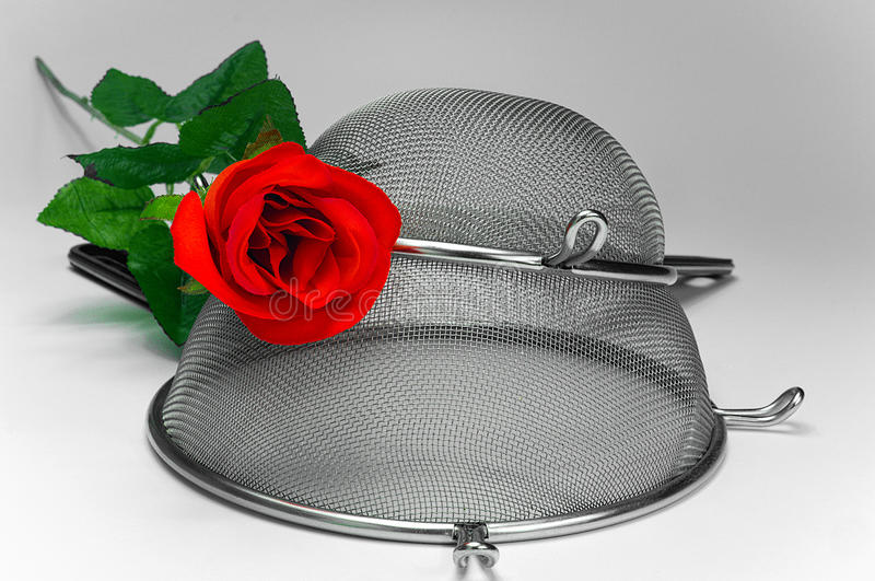 Two kitchen sieves with red rode on white background. Decoration stock photo