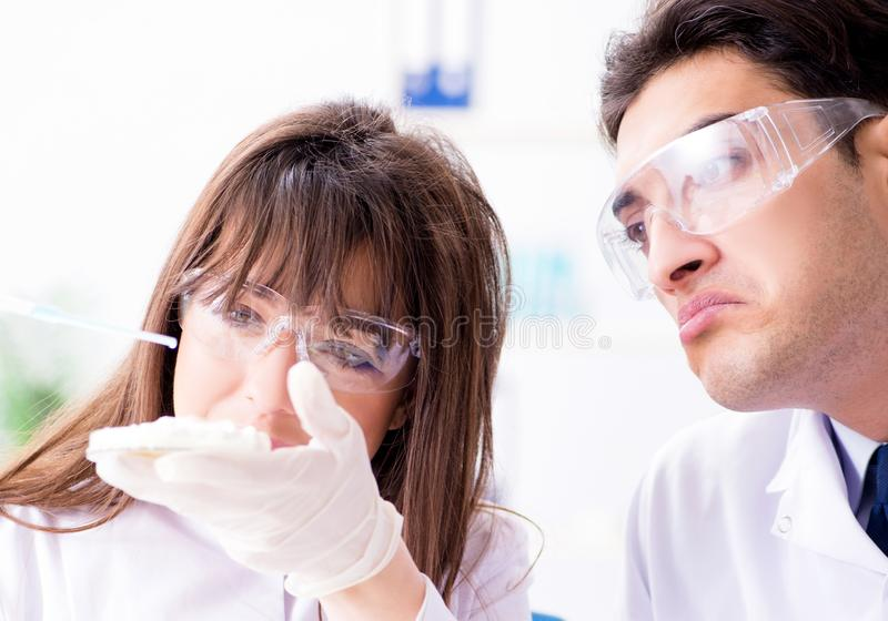 Two lab doctor testing food products stock image