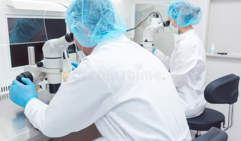 Two lab technicians or scientists working in laboratory stock images