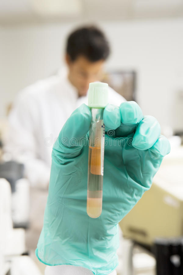 Two lab technicians working in hospital lab, focus on gloved hand holding test tube in foreground royalty free stock image