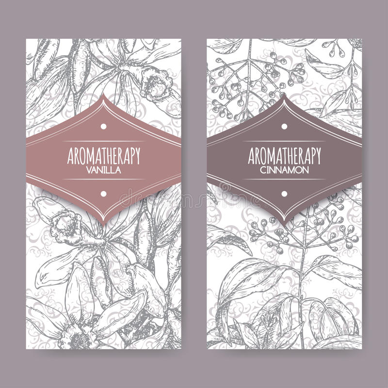 Two labels with vanilla and cinnamon sketch on background. Set of two labels with Vanilla planifolia aka Vanilla and Cinnamomum verum aka cinnamon sketch on royalty free illustration