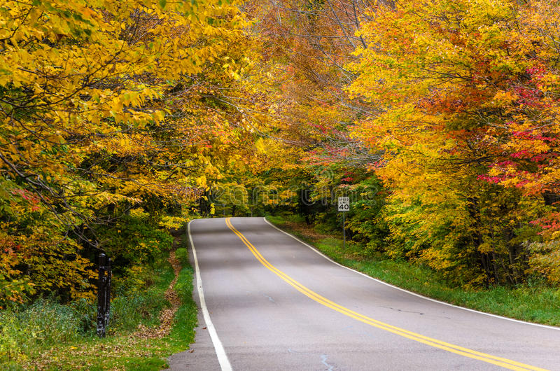 Two Lane Road Through a Forest in Autumn stock image