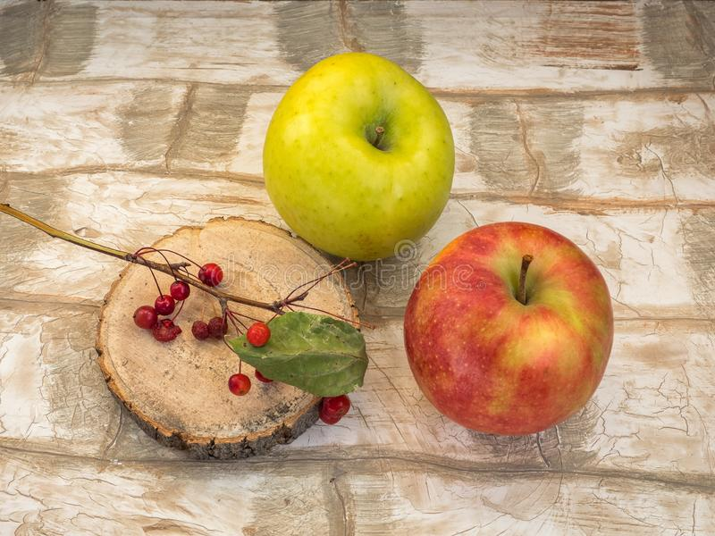 Two large apples and a sprig of wild small apples on a wooden saw. stock images