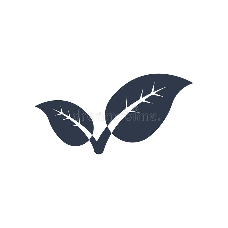 Two leaves icon vector sign and symbol isolated on white background, Two leaves logo concept. Two leaves icon vector isolated on white background for your web vector illustration