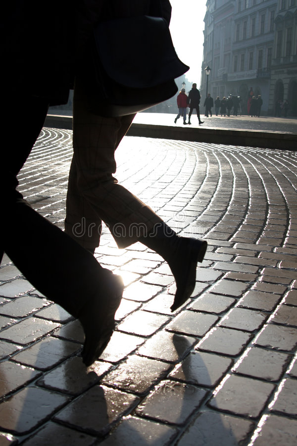 Two legs royalty free stock photography
