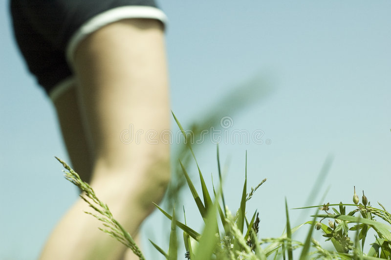 Download Two Legs #2 stock photo. Image of nature, bronze, enjoy - 732578