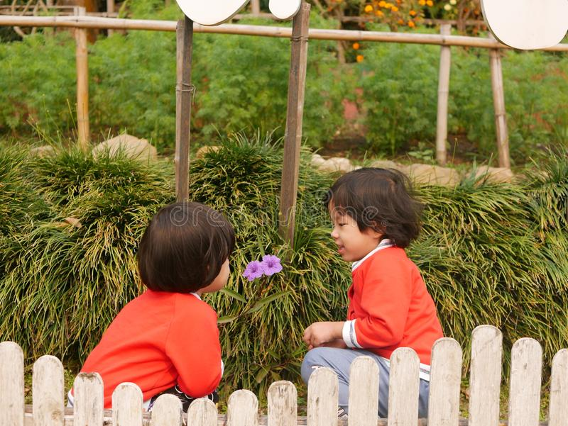 Two little Asian baby girls, sisters, enjoys talking and observing small purple flowers together stock photography