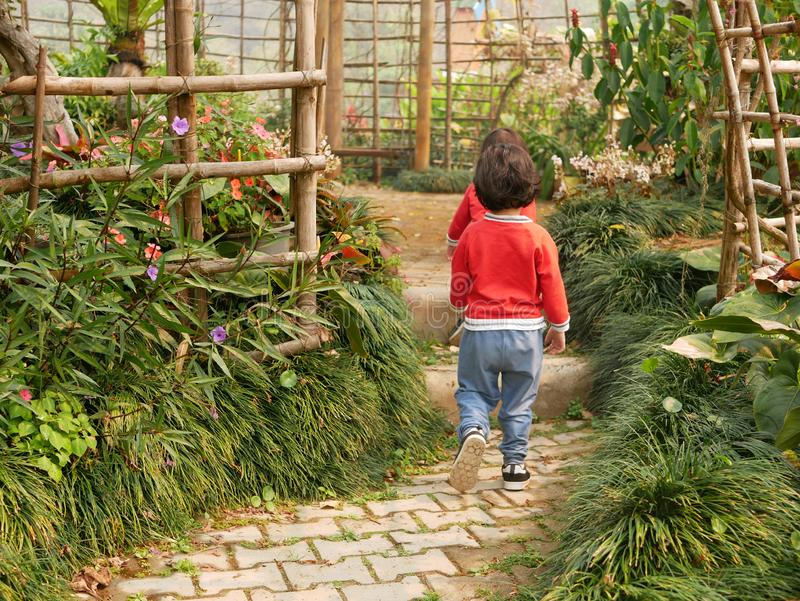 Two little Asian baby girls, sisters, walk on a walking path in a garden through beautiful plants and flowers.  royalty free stock images