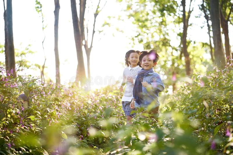 Two little asian kids running in flower field royalty free stock photography