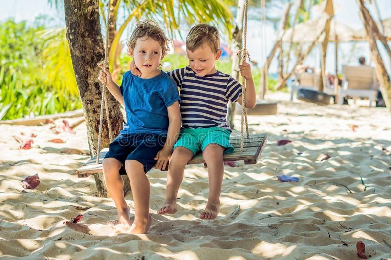 Two little blonde boys having fun on the swing on the tropical sandy coast.  royalty free stock image