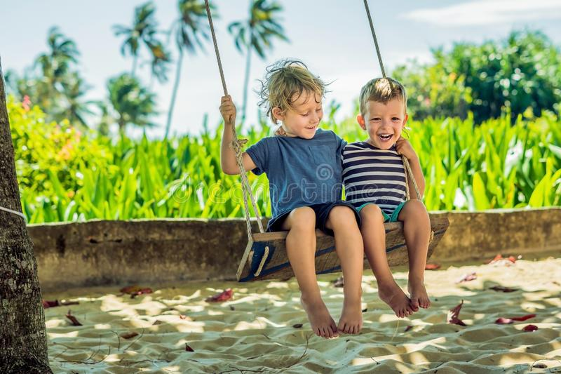 Two little blonde boys having fun on the swing on the tropical sandy coast.  stock image