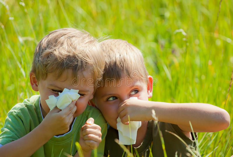 Two little boys are blowing their noses stock image
