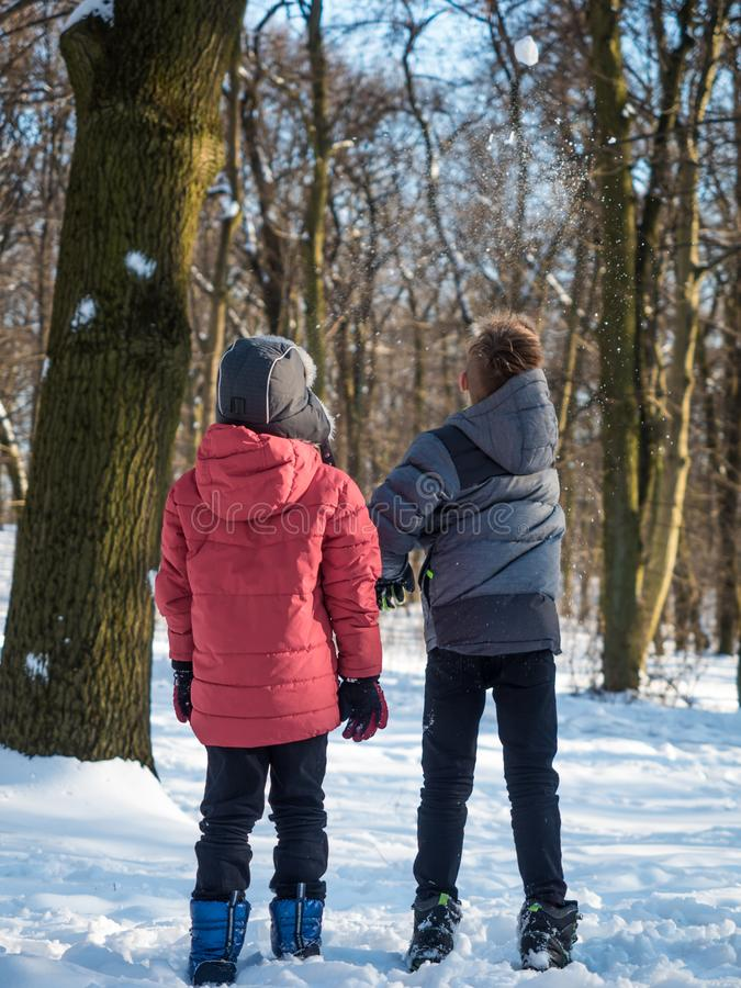 Two boys play with snow in winter park stock photography