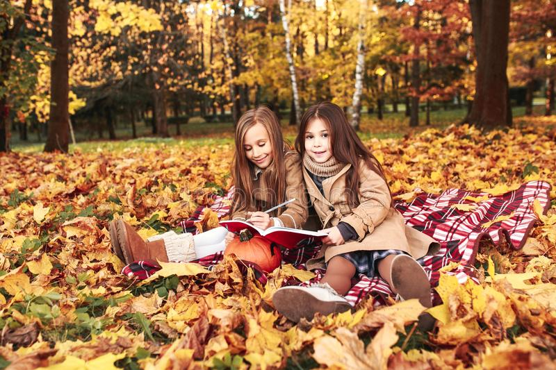 Two little cute girls plays in the autumn leaves in park stock images