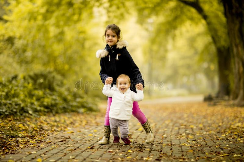 Two little girl sisters in the autumn park stock photos