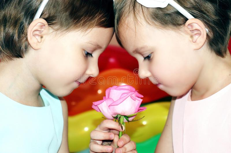 Two little girls twins in birthday with flower rose on the background of bright colored balls close-up stock photography