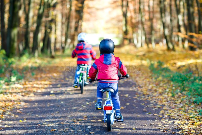 Two little kid boys in colorful warm clothes in autumn forest park driving bicycle. Active children cycling on sunny stock photography