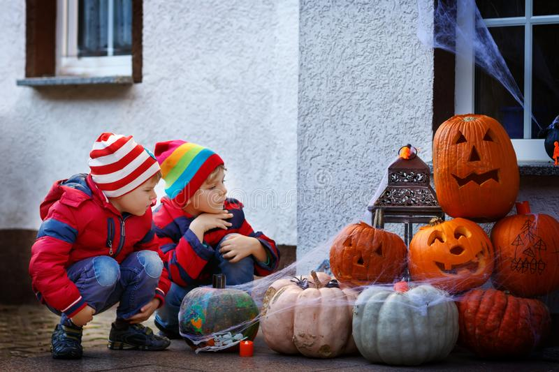 Two little kid boys sitting with traditional jack-o-lanterns pumpkins for halloween by the decorated scary door royalty free stock image