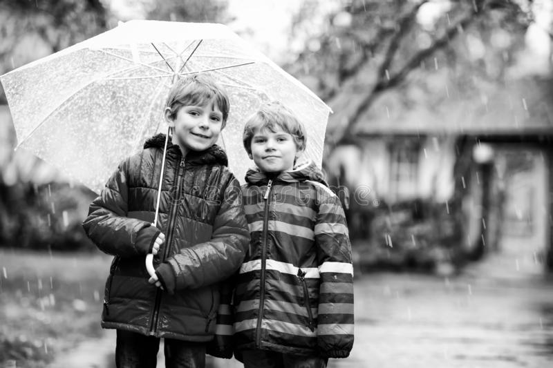 Two little kid boys on way to school walking during sleet, rain and snow with umbrella on cold day. Children, best royalty free stock photography