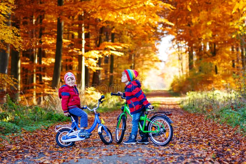 Two little kids boys, best friends in autumn forest with bikes. Active siblings, children with bicycles. Boys in royalty free stock photo