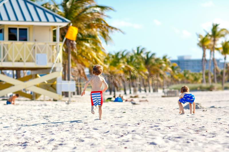 Two little kids boys having fun on tropical beach, happy best friends playing with sand, friendship concept. Siblings. Brothes in swim trousers hunting seagulls stock image
