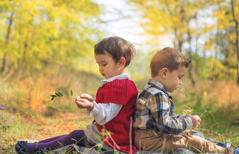 Two little kids playing he loves me or not in the park. Two little kids playing he loves me or not royalty free stock photography