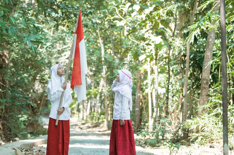 Two little Muslim girls wearing veils holding red and white flag and the other girl saluting stock images