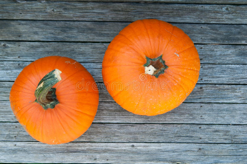 Two little pumpkins royalty free stock photo