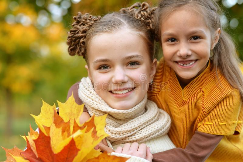 Two little sisters royalty free stock photo
