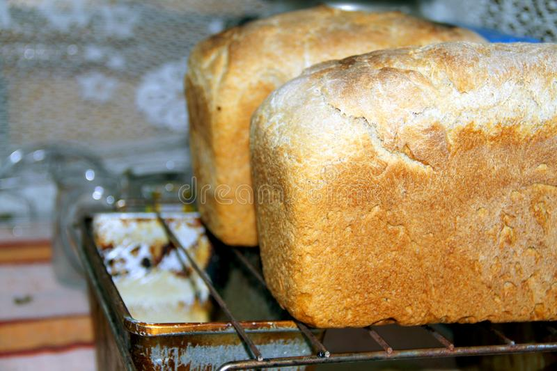 Two loaves of bread pulled only from the oven royalty free stock photography