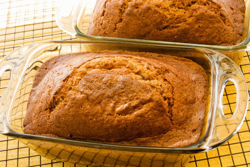 Two Loaves of Homemade Pumpkin Bread stock photography