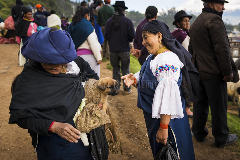 Two local women talking at the livestock market of the town of Otavalo in Ecuador. royalty free stock photography