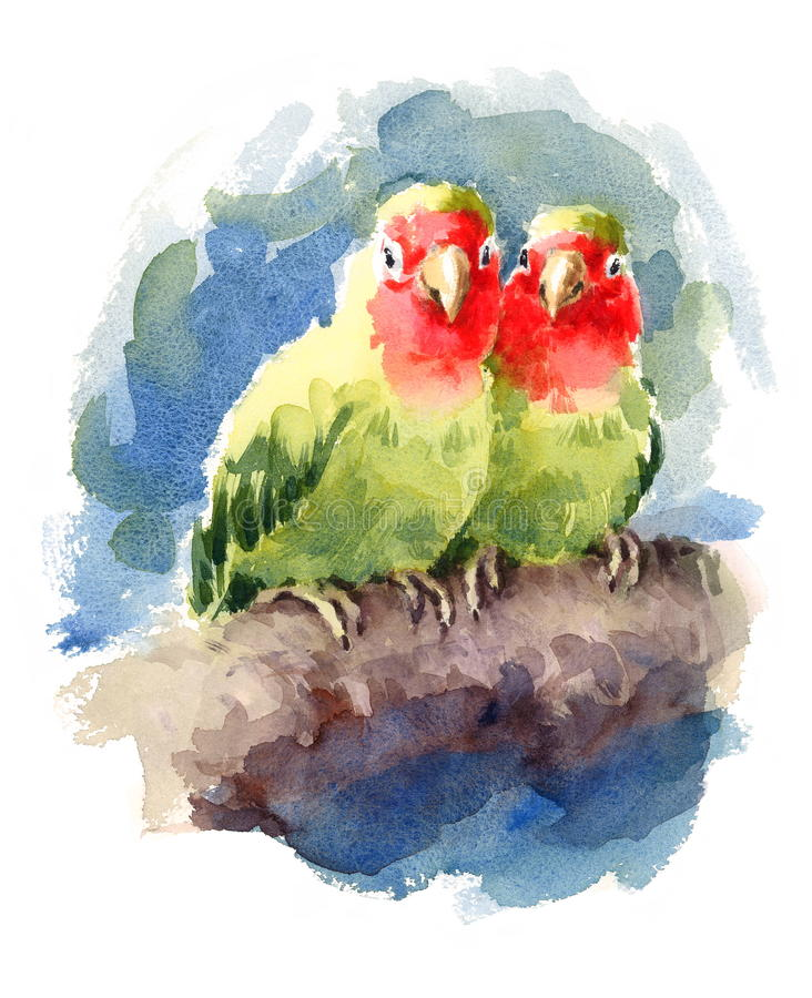 Two Lovebirds Watercolor Exotic Bird Love Illustration Hand Drawn. Hand drawn Watercolor illustration of a couple of Lovebirds royalty free illustration