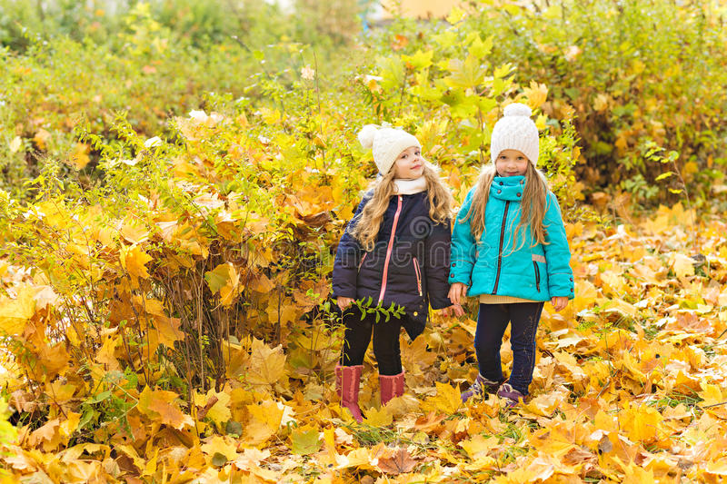 Two lovely girlfriends in autumn park royalty free stock images