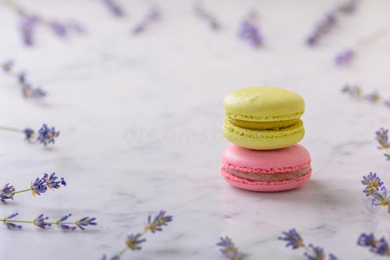 Two macarons on white marble table and sprigs of lavender laid out around macarons with copy space royalty free stock images