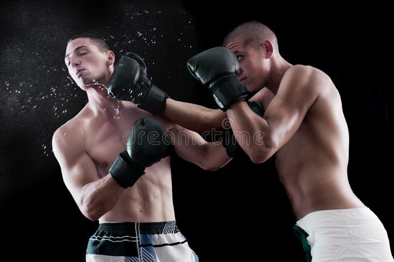 Two man boxing royalty free stock photos
