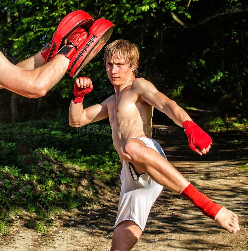 Two man training Muay thai stock photography