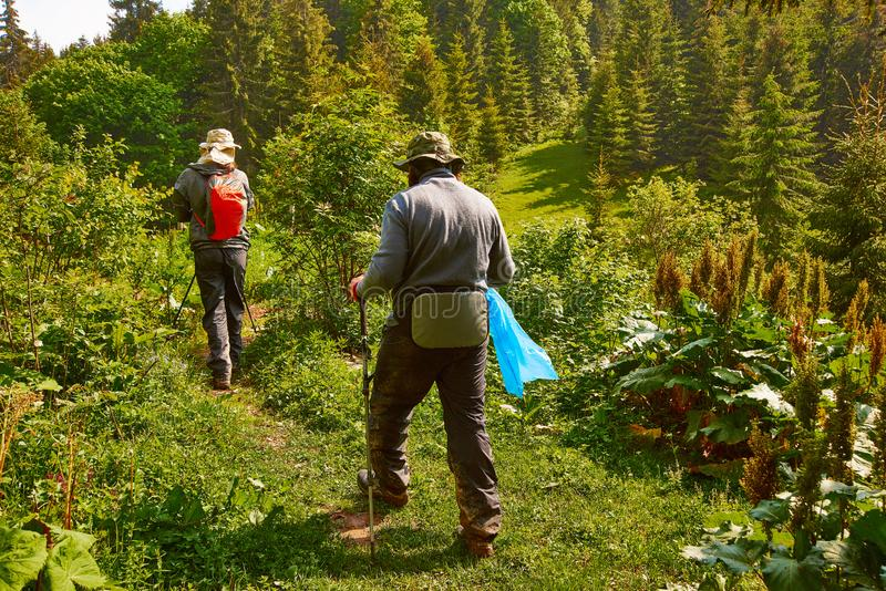 Two man walk through the forest high in the mountains and collect garbage in a garbage bag. protect the nature concept stock photos