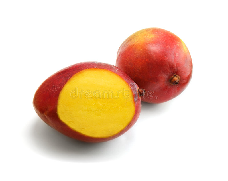 Two mangoes stock photo