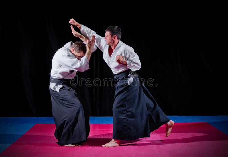 Two martial arts fighters stock image