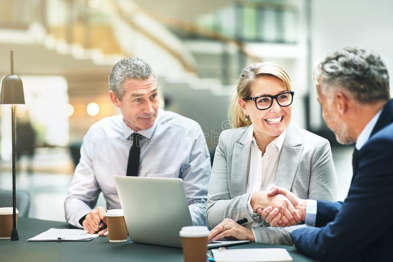 Smiling mature business colleagues shaking hands together in an stock image